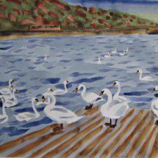 akvarel 39 x 50cm18000Kč